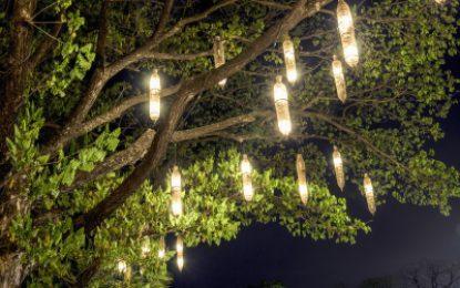 Comment mettre en lumière son jardin ?